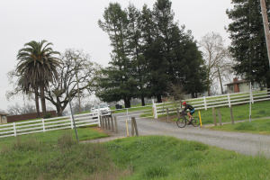 Bike crossing on the Dairyman project