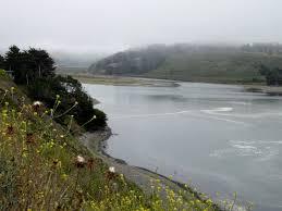 jenner coast