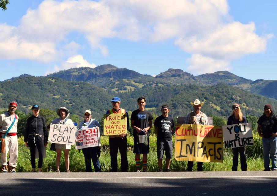 Healing Walk - Napa Valley